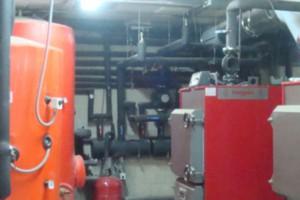 biomasa-losnogales